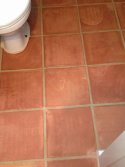 Terracotta Tiles Restoration Hertfordshire Cleaning